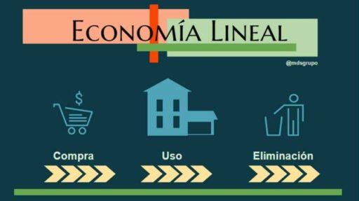 economia llineal